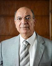 Dr. Mohamed Abdel-Gawad - Founder
